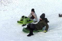 Zimní sportování